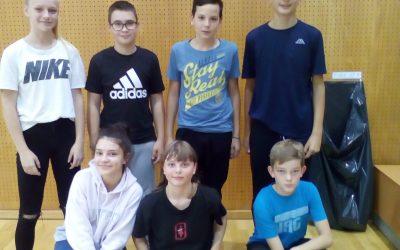 Področno posamično prvenstvo v badmintonu
